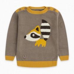 Jersey tricot BBRACCOON