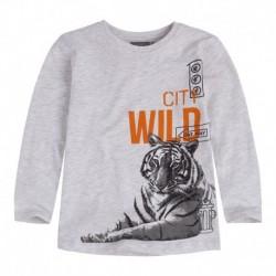 Camiseta Niño Bigcat