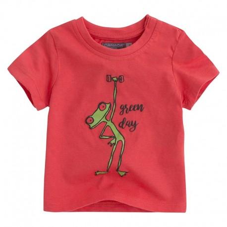 Camiseta bebé niño BBGreenday